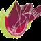 Thumb_logo_synargies-1-1458858177
