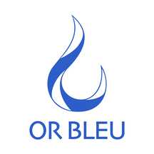 Normal_or_bleu_logo_final_v2-1506235682