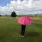 Thumb_parapluie